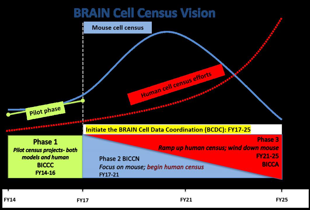 BRAIN Update FOA 2020 cell census timeline
