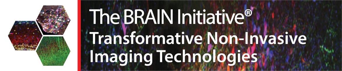 BRAIN non-invasive imaging workshop transformational tech 2021